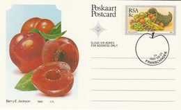1982 First Day 8c SOUTH AFRICA Postal STATIONERY CARD Illus PLUMB FRUIT Cover Stamps Rsa Grapes  Banana - Fruits