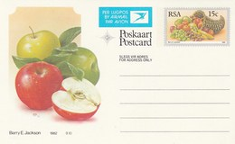 15c SOUTH AFRICA AIRMAIL Postal STATIONERY CARD Illus APPLE Cover Stamps Rsa Grapes  Banana - Fruits