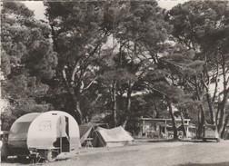 """CP  VEDENE   Camp  Touristique  """" FLORY """"  Caravane  Beau  Plan - Otros Municipios"""