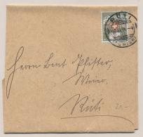 Schweiz - 1914 - 2 Cent Portofreiheidsmarke  On Local Wrapper Ruti - Vrijstelling Van Portkosten