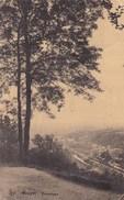Houyet, Panorama (pk39333) - Houyet