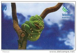 Serpent Cobra Reptile Snake Télécarte Phonecard  Telefonkarten J165 - Brésil