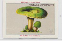 Chromo Champignon Mushroom 9,5 X 6,5 Texte Explicatif Au Dos Publicité Blécao - Trade Cards