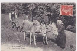 Les Pyrenees Vieux Metiers Labourage Avec 2 Anes Deux Couples Heureux Charrue A Anes 1910 - Autres Communes