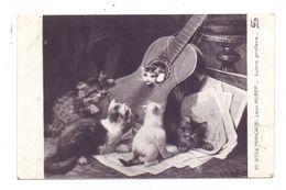 KATZEN / Cats / Chats / Katten / Gatti / Gatos - Artist Leon Huber - Chats