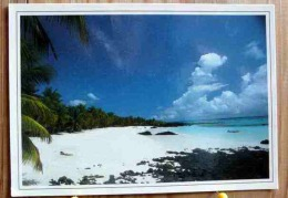 PIN UP AU LOIN PLAGE DE GALAWA A MITSAMIOULI NGAZIDJA COMORES SCAN R/V - Comores