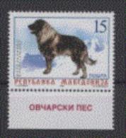 Macédoine 1999 Dog Chien - Chiens