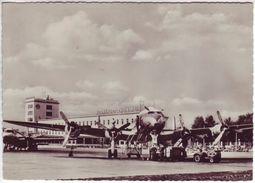 Allemagne - Aérodrome De Frankfurt - Rhein-Main - Aérodromes