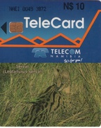 "TARJETA TELEFONICA DE NAMIBIA. (FAUNA) (305).  Número De Control: NAEI. Normal Zero: ""0"". - Namibia"