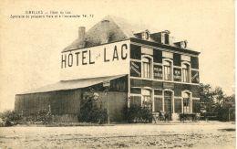 N°56359 -cpa Virelles -hôtel Du Lac- - Chimay