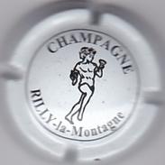 RILLY LA MONTAGNE N°20 - Champagne