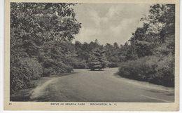 CPA ETATS UNIS ( Amerique ) - DRIVE IN SENECA PARK - ROCHESTER - NEW YORK - Rochester