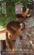 TARJETA TELEFONICA DE MADAGASCAR. (FAUNA) (438) - Madagascar