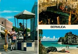 CPSM Bermuda   L2374 - Bermudes