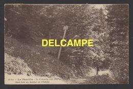 DD / 01 AIN / LA FAUCILLE / LE COLOMBY / SOUS-BOIS AU SENTIER DE L' ECHINE / PROMENEUR / CIRCULÉE EN 1928 - France