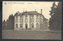 +++ CPA - HOGNE - Château - Nels N° 252   // - Somme-Leuze