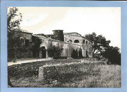 Tornac (30) Domaine De Taupessargues 2 Scans 06/07/1973 - France