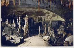 Grotte Di POSTUMIA Presso Trieste, Il Viale Delle Colonne Stalactite De Stalagmite Stalagmite Stalactite - Slovénie