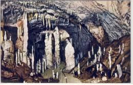 Grotte Di POSTUMIA Presso Trieste, La Grotte Nuove Stalagmite Stalactite Stalactite De Stalagmite - Slovénie