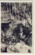 Grotte Di POSTUMIA Presso Trieste,  La Grande Colonna Nel Tartaro , 1925 - Slovénie