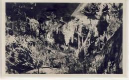 Grotte Di POSTUMIA Presso Trieste, La Valle Del Limbo  1925 - Slovénie
