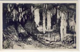 Grotte Di POSTUMIA Presso Trieste, La Grotta Del Paradiso  1925 - Slovénie