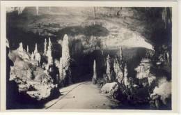Grotte Di POSTUMIA Presso Trieste, Il Viale Delle Colonne    1925 - Slovénie