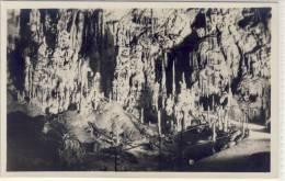 Grotte Di POSTUMIA Presso Trieste, La Sala Delle Trine  1925 - Slovénie