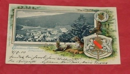 Gruss Aus Todtmoos Schwarzwald :::: Belle Carte Litho Gaufrée -------- 435 - Waldshut-Tiengen
