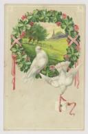 Colombes, Pigeons, Lettre, 1911 - Gaufrée (hm079) - Animaux & Faune