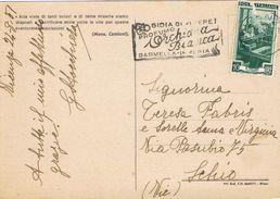 25603. Postal VICENZA (Italia) 1951. Slogan ORCHIDEA BIANCA. Orquidea, Flowers - 6. 1946-.. Repubblica
