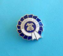 BIRMINGHAM CITY FC - England Football Soccer Club Enamel Pin Badge Fussball Anstecknadel Distintivo Brittish - Football