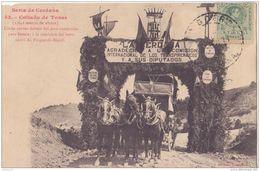 SERIA CERDANA COLLODO DE TOSAS ATTELAGE FËTE 1911 CPA BON ÉTAT - Espagne