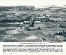 Photo, Le Sud-Ouest (1964) : Le Vignoble Du Médoc à Chateau-Margaux (Gironde), Vignes, Vin, Légende - Ohne Zuordnung