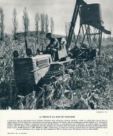 Photo, Le Sud-Ouest (1964) : La Récolte Du Maïs En Gascogne, Tracteur, Machine Agricole, Légende - Vieux Papiers