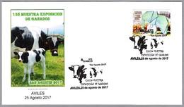 135 EXPOSICION DE GANADOS - 135th Livestock Contest. Vaca - Cow. Aviles, Asturias, 2017 - Agricultura