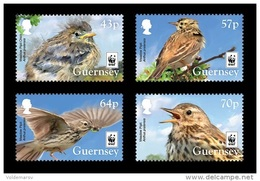 Guernsey 2017 Mih. 1606/09 Fauna. WWF. Birds. Meadow Pipit MNH ** - Guernsey