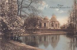 Luik, Liège, Palais Des Beaux Arts (pk39392) - Liege