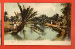 NEM-19  Gabès  Vue Sur L'Oued. ANIME. Cachet 1910 - Tunisia