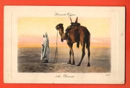 NEM-20 Scènes Et Types. Au Désert, Dromadaire, Eau-forte . ANIME. Cachet 1911 Sur Timbre De Tunisie - Tunisia