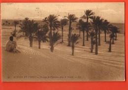 NEM-21 Scènes Et Types. Groupe De Palmiers Dans Le Désert. ANIME. Cachet Zarzis 1911 - Tunisia
