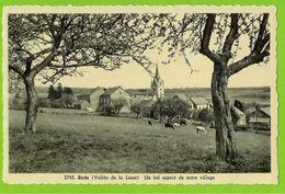 Redu - 2795 Un Bel Aspect Du Village - Circulé 1957 - Arduenna Maison Jean Detroz - Libin