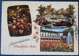 FRANKFURT AM MAIN - Palmengarten - Parl Garden Vg 1972 - Frankfurt A. Main