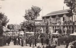 CPA - Le Plessis Robinson - Bals Champêtre Au Grand Arbre - Le Plessis Robinson