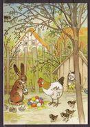 Fritz Baumgarten , Bunte Eier , Aus Dem Bilderbuch , Gackelchen Und Wackelchen - Künstlerkarten