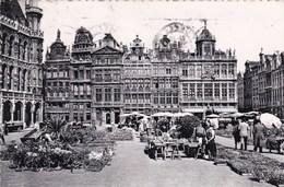 Brussel, Bruxelles, Grote Markt, Grand Place (pk39432) - Places, Squares