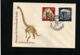DDR 1973  Fossilien / Fossils Interesting Cover - Fossiles