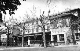 01-THOISSEY- HOTEL RESTAURANT DU CHAPON FIN - France