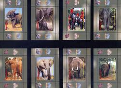 ELEPHANTS  VERY INTERESTING  GUINEA ECUATORIAL   8 Sheets (Mint NH) - Elephants