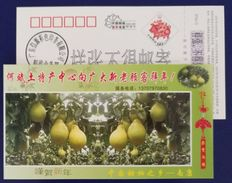 Chinese Sweet Grapefruit,Fruit,CN07 Nankang Hebin Local Special Product Advert Pre-stamped Card,specimen Overprinted - Obst & Früchte